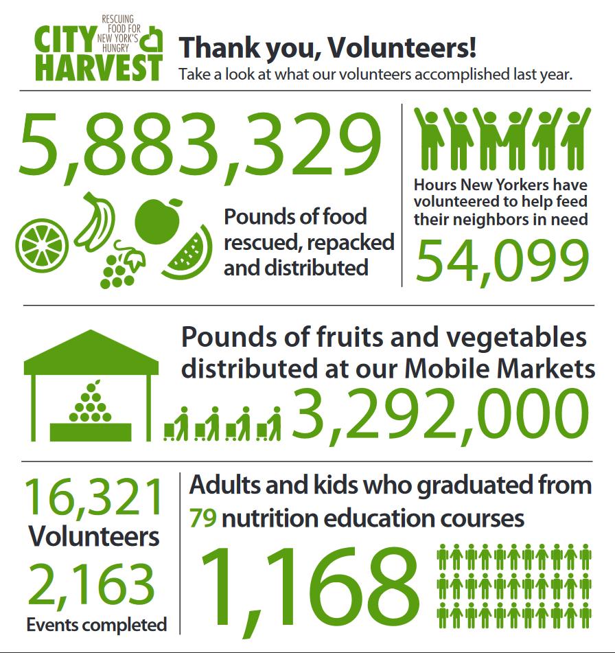 Volunteer Infographic