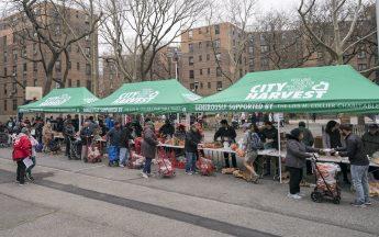 Queens Mobile Markets™